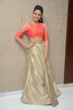 Sree Mukhi Photoshoot (23)_576bb7667540e.JPG