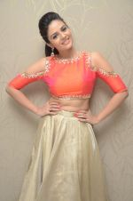 Sree Mukhi Photoshoot (24)_576bb774765e8.JPG