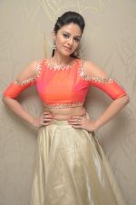 Sree Mukhi Photoshoot (25)_576bb780b0adb.JPG