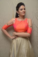 Sree Mukhi Photoshoot (30)_576bb7b6e380f.JPG