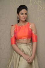 Sree Mukhi Photoshoot (88)_576bb93a19685.JPG