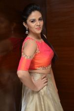 Sree Mukhi Photoshoot (51)_576bb89e4f7a0.JPG