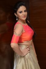 Sree Mukhi Photoshoot (52)_576bb8a47015b.JPG