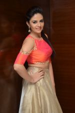Sree Mukhi Photoshoot (54)_576bb8b166311.JPG