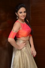 Sree Mukhi Photoshoot (55)_576bb8b4ba5c6.JPG