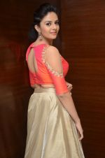 Sree Mukhi Photoshoot (58)_576bb8c63a6b6.JPG