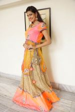 Swetha Jadhav Photoshoot (12)_576bb70763791.jpg