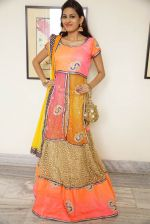 Swetha Jadhav Photoshoot (2)_576bb69e250f5.jpg