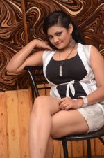 Vasavi Reddy Photoshoot (68)_576bb92046e06.JPG