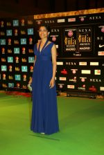 Freida Pinto at Videocon d2h IIFA Rocks 2016 in Madrid
