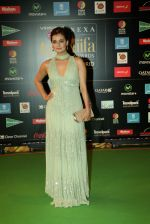 Dia Mirza at NEXA IIFA Awards 2016 (20)_576fc4fc0641a.JPG