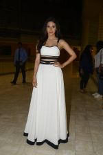 Amyra Dastur at SIIMA_s South Indian Business Achievers awards in Singapore on 29th June 2016 (35)_5774a27c8b617.JPG