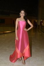 at SIIMA_s South Indian Business Achievers awards in Singapore on 29th June 2016 (21)_5774a2a06f907.JPG