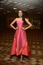at SIIMA_s South Indian Business Achievers awards in Singapore on 29th June 2016 (30)_5774a2a2e47f6.JPG