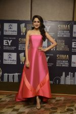 at SIIMA_s South Indian Business Achievers awards in Singapore on 29th June 2016 (33)_5774a2a3c9f43.JPG