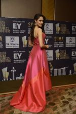 at SIIMA_s South Indian Business Achievers awards in Singapore on 29th June 2016 (34)_5774a2a48d017.JPG