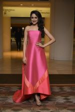 at SIIMA_s South Indian Business Achievers awards in Singapore on 29th June 2016 (38)_5774a2a91dbc7.JPG