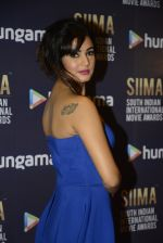 Sonal Chauhan at SIIMA 2016 DAY 1 red carpet on 30th June 2016 (211)_577616d240968.JPG