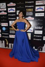 Sonal Chauhan at SIIMA 2016 DAY 1 red carpet on 30th June 2016 (214)_577616cc85d3c.JPG