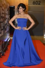Sonal Chauhan at SIIMA 2016 DAY 1 red carpet on 30th June 2016 (218)_577616cf4be7e.JPG