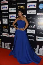 Sonal Chauhan at SIIMA 2016 DAY 1 red carpet on 30th June 2016 (212)_577616c9cd000.JPG