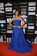 Sonal Chauhan at SIIMA 2016 DAY 1 red carpet on 30th June 2016 (213)_577616cbd6c65.JPG
