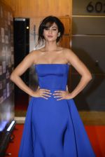 Sonal Chauhan at SIIMA 2016 DAY 1 red carpet on 30th June 2016 (217)_577616ce87a4f.JPG