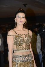 Urvashi Rautela at SIIMA 2016 DAY 1 red carpet on 30th June 2016 (79)_577616e47a3ce.JPG