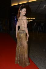 Urvashi Rautela at SIIMA 2016 DAY 1 red carpet on 30th June 2016 (87)_577616ea0dad0.JPG