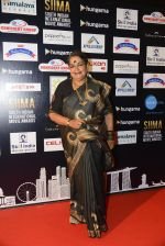 Usha Uthup at SIIMA 2016 DAY 1 red carpet on 30th June 2016 (4)_577617044f26b.JPG