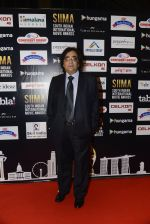 at SIIMA 2016 DAY 1 red carpet on 30th June 2016 (10)_5776165b57b96.JPG