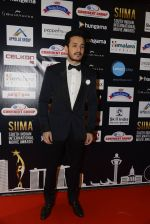 at SIIMA 2016 DAY 1 red carpet on 30th June 2016 (101)_5776169dba4f7.JPG