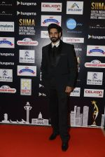 at SIIMA 2016 DAY 1 red carpet on 30th June 2016 (104)_577616a0148b8.JPG