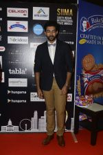 at SIIMA 2016 DAY 1 red carpet on 30th June 2016 (105)_577616a0f314b.JPG