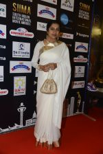 at SIIMA 2016 DAY 1 red carpet on 30th June 2016 (113)_577616ae3df06.JPG