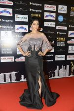 at SIIMA 2016 DAY 1 red carpet on 30th June 2016 (114)_577616aedfd9f.JPG