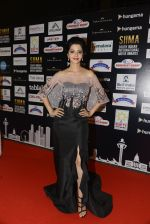 at SIIMA 2016 DAY 1 red carpet on 30th June 2016 (116)_577616b037f7d.JPG