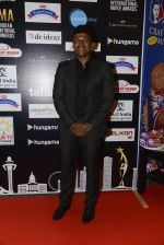 at SIIMA 2016 DAY 1 red carpet on 30th June 2016 (118)_577616b17ff29.JPG