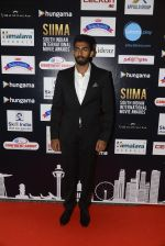 at SIIMA 2016 DAY 1 red carpet on 30th June 2016 (119)_577616b238293.JPG