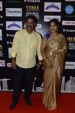 at SIIMA 2016 DAY 1 red carpet on 30th June 2016 (120)_577616b2eb640.JPG