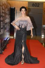 at SIIMA 2016 DAY 1 red carpet on 30th June 2016 (123)_577616b5113e5.JPG