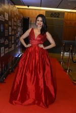 at SIIMA 2016 DAY 1 red carpet on 30th June 2016 (129)_577616b95793d.JPG
