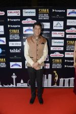 at SIIMA 2016 DAY 1 red carpet on 30th June 2016 (13)_5776165de0c87.JPG