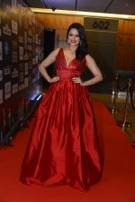 at SIIMA 2016 DAY 1 red carpet on 30th June 2016 (130)_577616ba30cd6.JPG