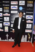 at SIIMA 2016 DAY 1 red carpet on 30th June 2016 (133)_577616bc2736a.JPG