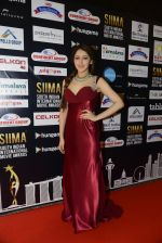 at SIIMA 2016 DAY 1 red carpet on 30th June 2016 (14)_5776165ea7df2.JPG