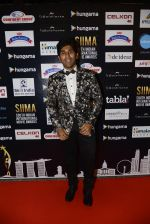 at SIIMA 2016 DAY 1 red carpet on 30th June 2016 (173)_577616cc35533.JPG