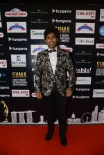 at SIIMA 2016 DAY 1 red carpet on 30th June 2016 (174)_577616cccc96f.JPG