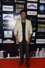 at SIIMA 2016 DAY 1 red carpet on 30th June 2016 (176)_577616ce1ed79.JPG