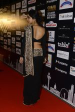 at SIIMA 2016 DAY 1 red carpet on 30th June 2016 (181)_577616d2ba382.JPG